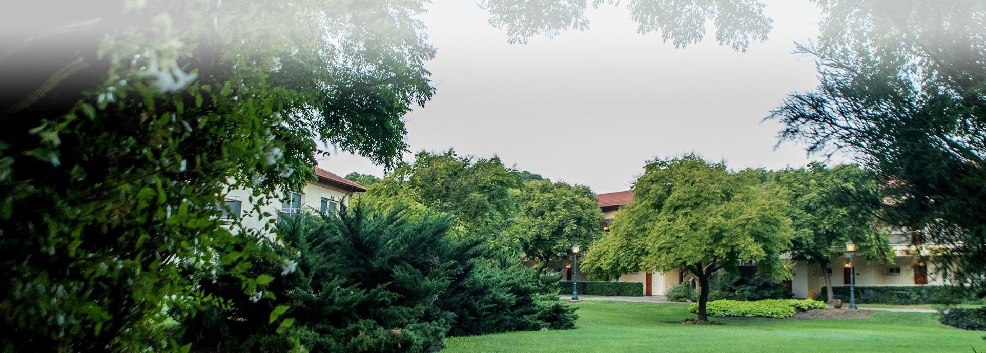 מלון פסטורל כפר בלום - נוף ירוק